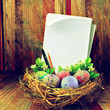 Easter eggs in hay nest
