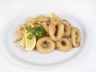Calamares 02