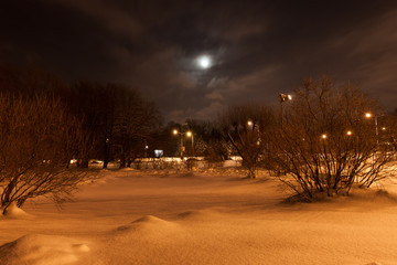 Winter night snow