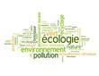 """Nuage de Tags """"ECOLOGIE"""" (vert environnement pollution planète)"""
