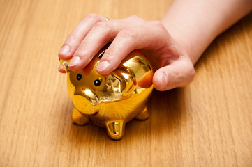 woman takes her piggy bank