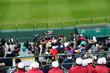 Stadium-12
