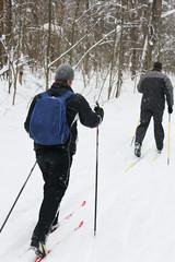 Active and healthy way of life (skiing)