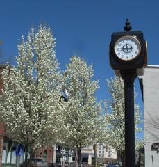 Town Square, Auburn Maine, USA