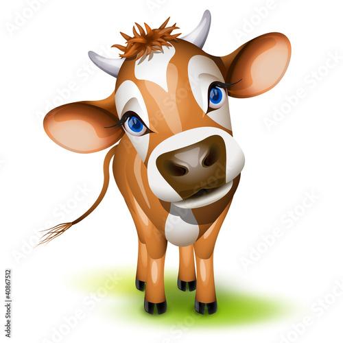 Foto op Canvas Boerderij Little jersey cow