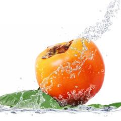 caco splash