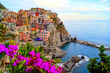 Leinwandbild Motiv Cinque Terre coast of Italy with flowers