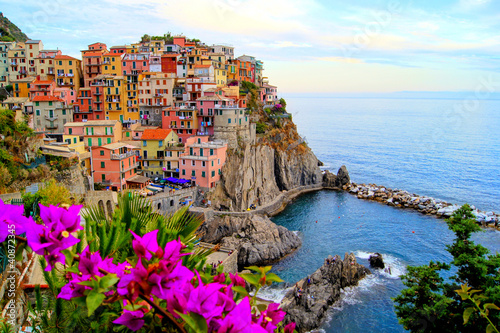 Cinque Terre coast of Italy with flowers Poster