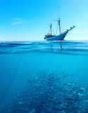 Fish in a sea and sail boat
