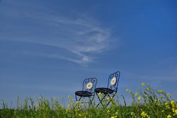 大空と草花と椅子のある風景