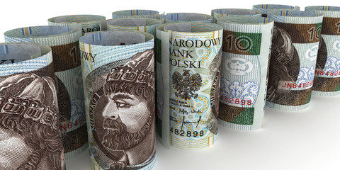 10 PLN Notes rolled