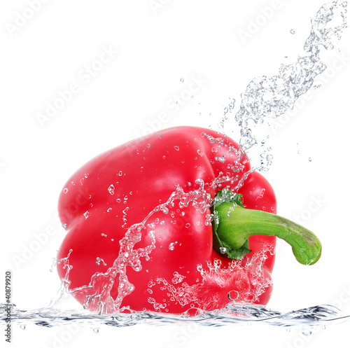 peperone splash