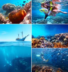 Collage underwater