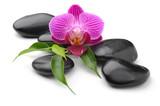 Fototapete Orchidee - Bambus - Blume