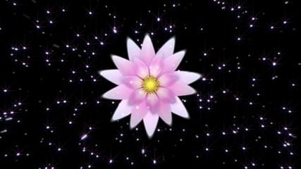 Universal flower Loop