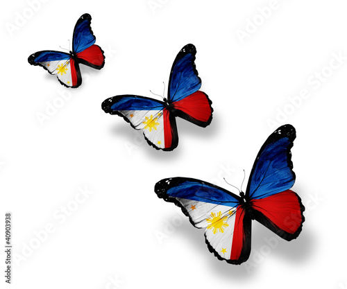 Three Philippine flag butterflies, isolated on white