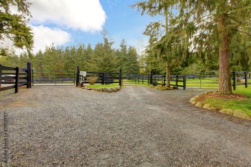Horse farm gravel road with three gates.