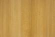 wood wallpaper, yellow beech wood surface.
