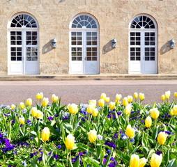 Tulpenbeet vor Eingang