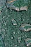 Rain spots on Metallic tabletop, Andalusia © Arena Photo UK poster