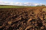 champs labouré