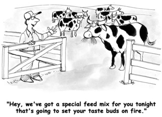 Feed Mix for Dairy Cows