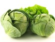 Cabbage and lettuce, isolated