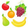 Vector set of fresh fruits on white background