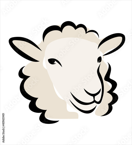 happy sheep portrait