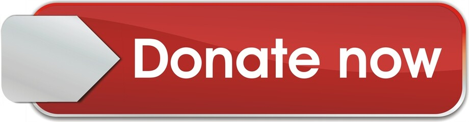bouton donate now