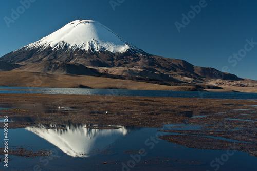 Andean volcano Parinacota