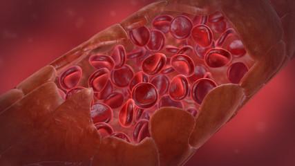 Blutbahn/Kapillare außen mit roten Blutkörperchen