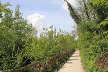 Pista ciclabile, Parco Groane