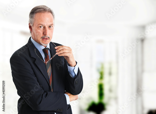 Handsome senior businessman portrait