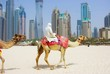 Dubai Camel on the town scape backround, United Arab Emirates.