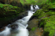 Beautiful waterfall of Clare Glens, Ireland