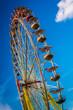 Ferris Wheel in summer