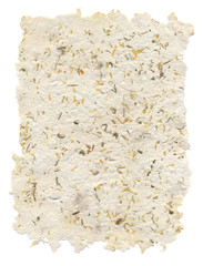 Handmade paper with seeds and petals inside