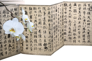 White orchid calligraphy