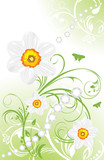 Spring ornamental background with daffodils