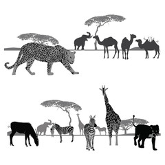 Vector illustration.Africa landscapes.Wildlife