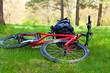 Bike and Backpack Lying on Green Grass
