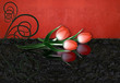 Red tulips with reflection and swirl