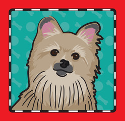Pomeranian Cartoon