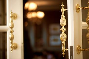 Luxury Door Entrance