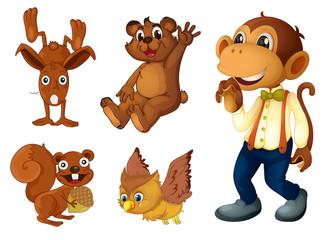 Brown animal collection