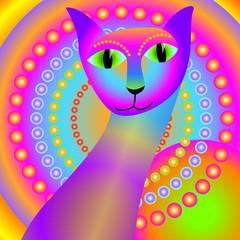 gatto magico