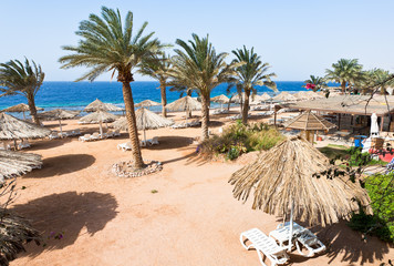 coral bay beach in Aqaba