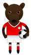 Switzerland Football Soccer Mascot Character