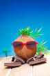 Trendy coconut on his travels